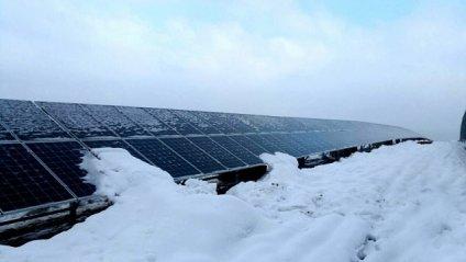 Нову сонячну електростанцію запустили на Закарпатті