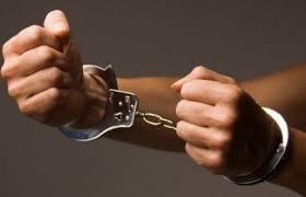 На Закарпатті затримали двох юнаків, які систематично обкрадали односельців