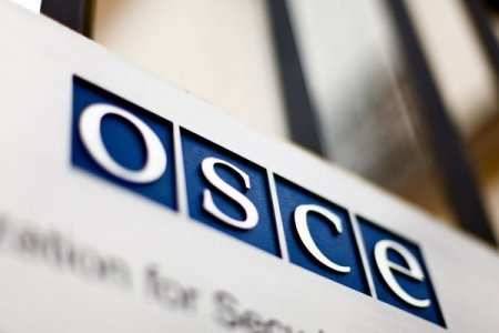 OSCE вивчить проблему визнання русинів в Україні