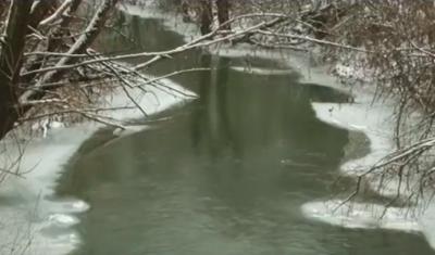 Закарпаття очікує паводкова хвиля (Відео)