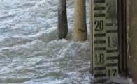 Вода в Латориці поблизу Чопа піднялася до 5 метрів, але загрози підтоплень немає