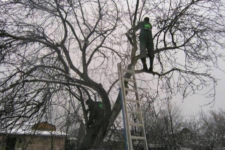 """ПАТ """"Закарпаттяобленерго"""" попереджає про можливе відключення електроенергії"""