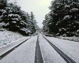 Через негоду на Закарпатті введено обмеження для руху фур по трасі «Мукачево – Рогатин»