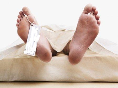 На Виноградівщині чоловік вбив свою жінку палкою