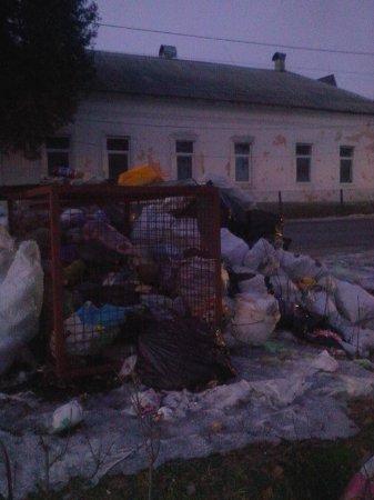 На Рахівщині люди навпроти школи та дитячого садочка вчинили собі сміттєзвалище (Фото)