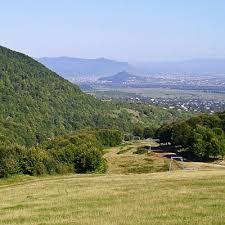 Закарпатська прокуратура домоглася повернення громаді земельної ділянки площею 8 га та вартістю 14 млн грн
