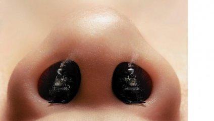 Вчені з'ясували, як нюх допомагає прогнозувати власну смерть