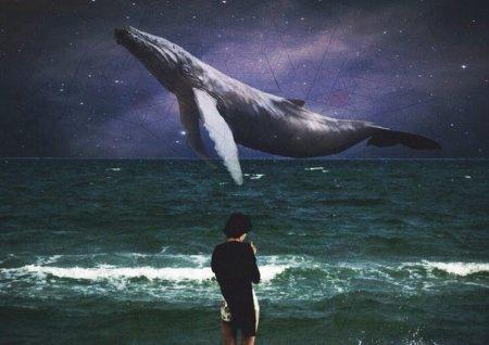 """Закарпатський «куратор» гри «Синій кит» заставляв учасників розкидати """"гнуй"""" та копати городи"""