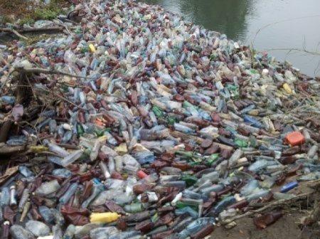 На Великоберезнянщині береги річок заполонили пляшки (Відео)