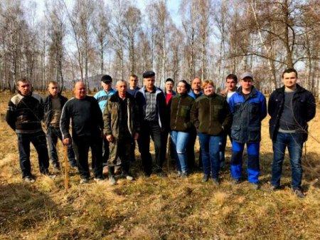 Лісівники Тячівщини садять дерева