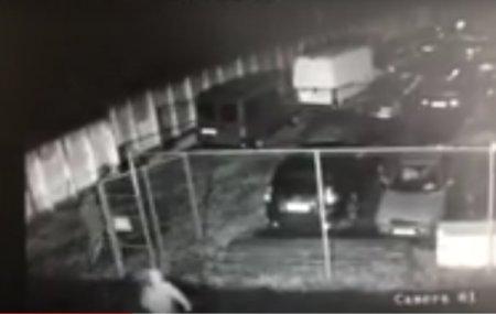 Toyota Land Cruiser Prado викрали зі стоянки на митниці (ВІДЕО)