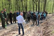 Закарпатські митники взяли участь в акції «Майбутнє лісу у твоїх руках»