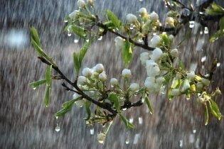 Завтра на Закарпаття насувається дощ зі снігом