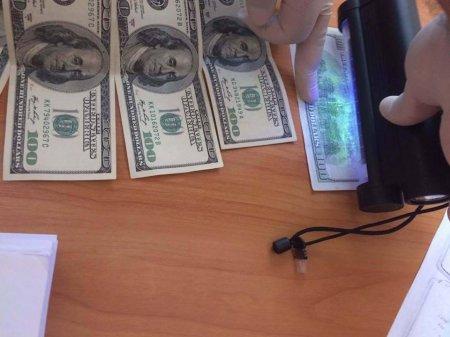 Керівник автошколи отримав  700 дол США хабара за видачу посвідчення водія