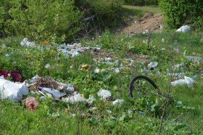 Екологи оштрафували 17 посадовців Закарпаття за сміття. В списку і Свалявська райдержадміністрація