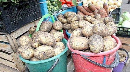 Чому почала дорожчати закарпатська картопля?