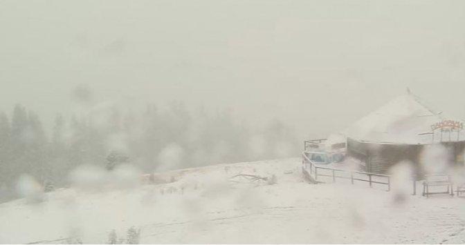 ВУкраинском государстве выпал 1-ый снег