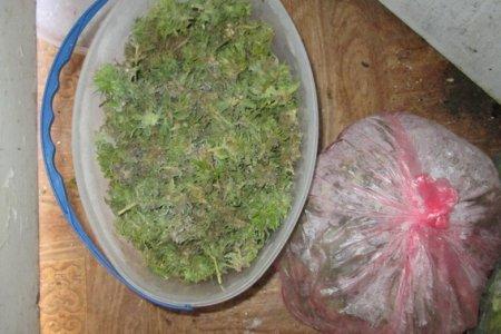 Хустські поліцейські вилучили в чоловіка майже 5 кілограмів наркотиків (фото)