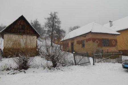 На Свалявщині у пенсіонерки вкрали корову