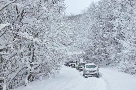 Морози і снігопади попереду: в Укргідрометцентрі розповіли, коли прийде справжня зима