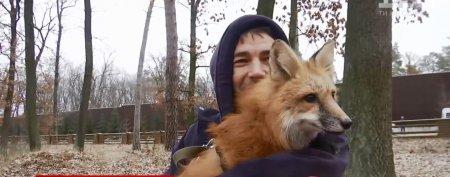 Українець на людах з'явився з прирученою лисицею, його відразу оштрафували