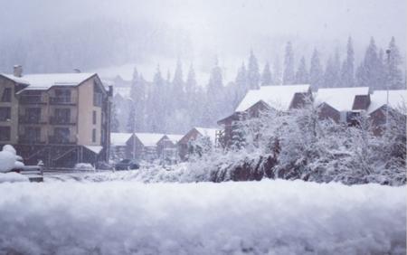Закарпаття накрила негода: сніг та сильний вітер залишив без електропостачання села