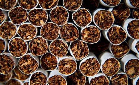 На Закарпатській митниці виявили велику кількість прихованих цигарок