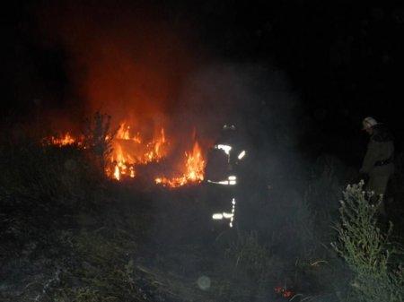 За добу сталося 10 пожеж і загорянь в екосистемах