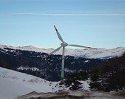 Рекреаційна зона чи промисловий парк – чи будуть на Закарпатті вітряки (відео)