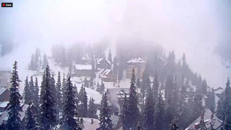 Закарпаття накрив сніговий шторм деякі села вже залишилися без електроенергії