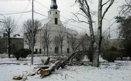 Учні двох шкіл Виноградова завтра в школу не підуть