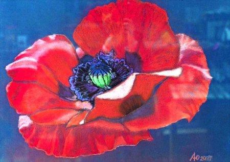 Відкрилася виставка робіт молодої ужгородської художниці Любові Павлишин.