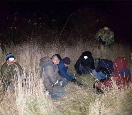 Стражі кордону затримали шестеро нелегалів