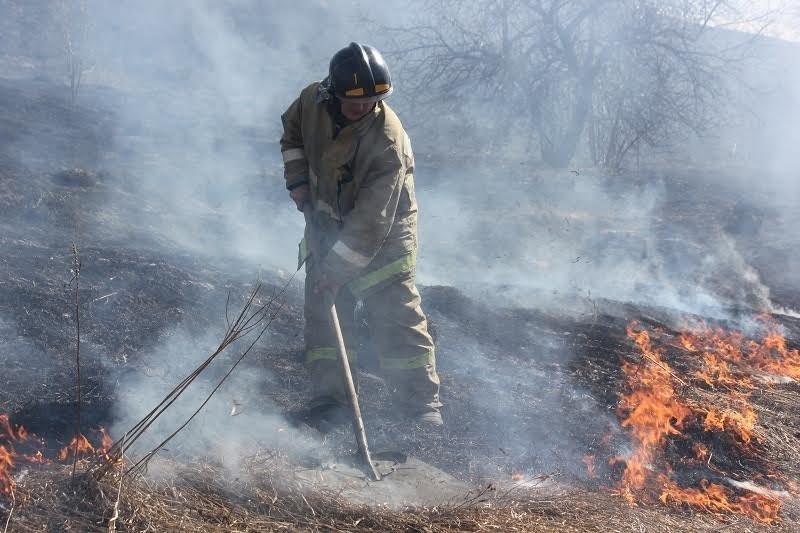 На Прикарпатті масово горить суха трава