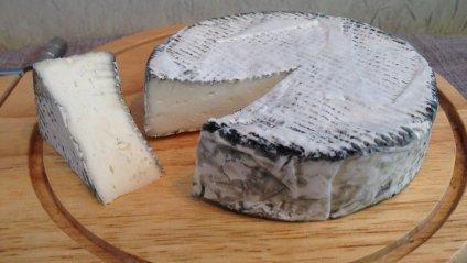 Корисні властивості козячого сиру, про які ніхто не знає