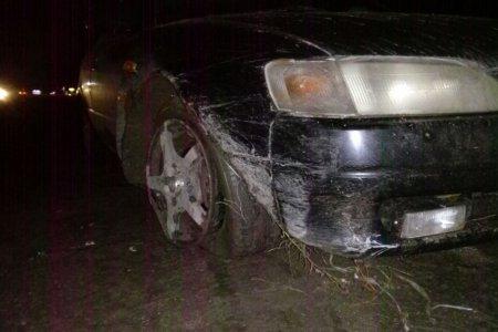 """Шістьох п'яних водіїв """"оформили"""" на Закарпатті: нічні пригоди молоді"""