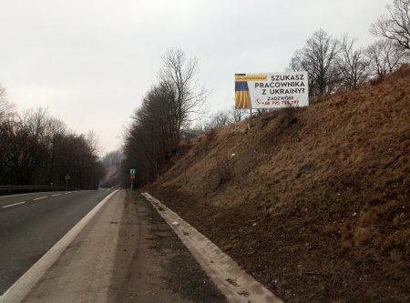 Українців продають на Заході як худобу на базарі (фото)