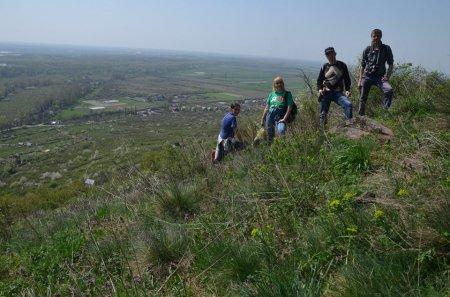 На Виноградівщині проведено дослідження флори і рослинності заповідного масиву «Чорна гора»