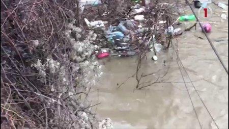 Катастрофа з сміття, яке Тиса несе в Європу (відео)
