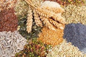 Чому 14 травня не можна позичати насіння: народні прикмети