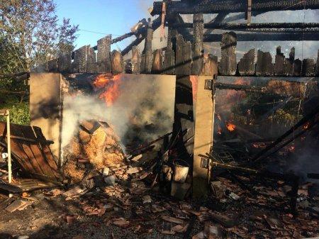 Мукачівські вогнеборці ліквідували пожежу (фото)