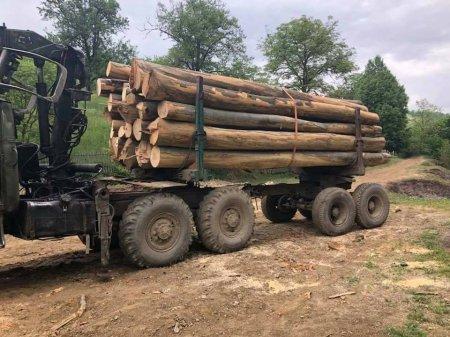 На Свалящині люди перекрили дорогу лісовозам (фото)