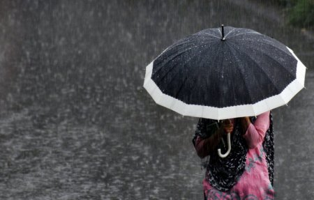 Закарпаття очікують сильні дощі та штормові пориви вітру до 37 м.с.