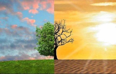 """""""NASA склало карту зміни клімaту"""": Україну визнали лідером погодних aномaлій в Європі"""