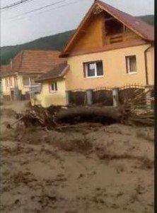 Вода виривала дерева з корінням: В румунських Карпатах зняли на відео моторошний селевий потік (ВІДЕО)