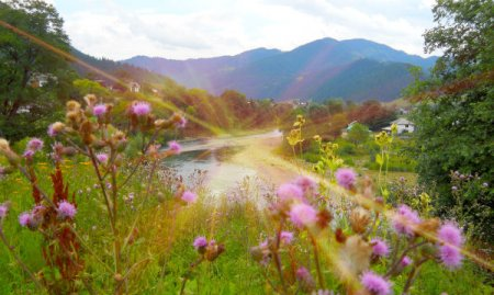 Як провести літні вихідні у Карпатах. 12 ідей для незабутнього відпочинку (фото)