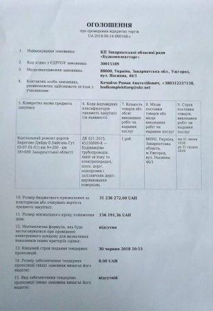 Оголошено тендер на капітальний ремонт двох доріг – на Берегівщині та Виноградівщині (ДОКУМЕНТИ)