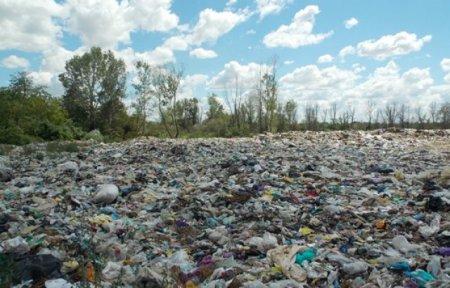 У Виноградові на сміттєзвалищі тракторист відкопав тіло молодої дівчини