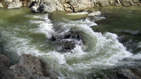 Сьогодні на Рахівщині водолази розшукали тіло 3-річної дівчинки, яка потонула 24 липня