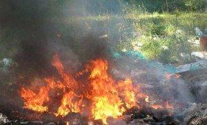 На Закарпатті заживо згоріла жінка
